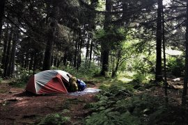 """DID YOU HEAR THAT?"" – ON FEAR OF THE NOISES OUTSIDE YOUR TENT"
